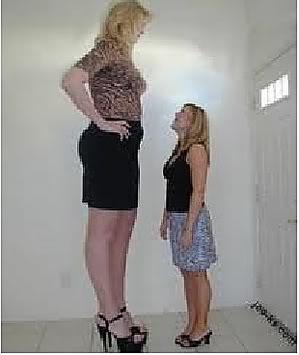 Tall chubby women teaching year